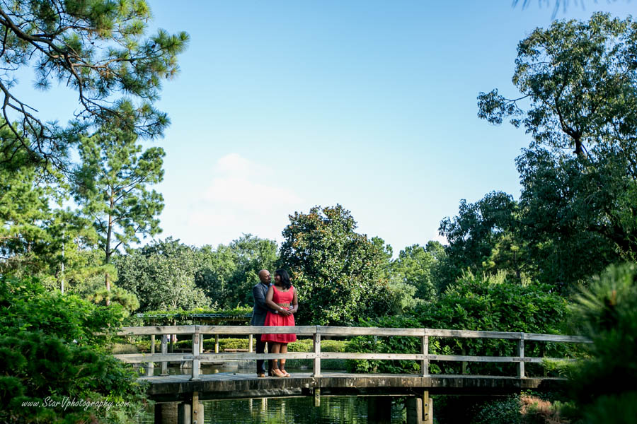 Indian Engagement photo at Japanese Garden